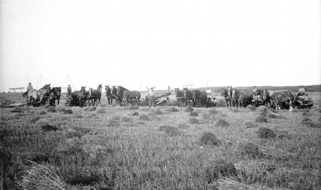 10.2  Ukendt landbrug.  Der står 1934 på æsken.