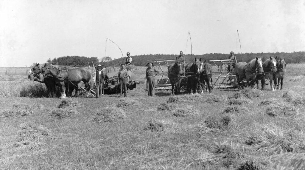 12.1  Ukendt landbrug.  Der står 1948 på æske