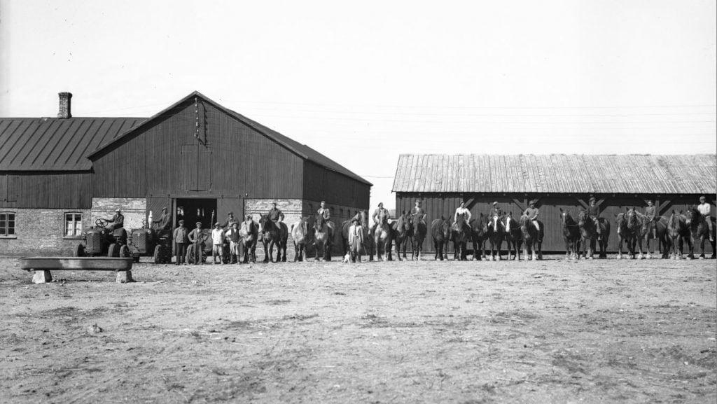 12.7  Ukendt landbrug.  Der står 1948 på æsken.