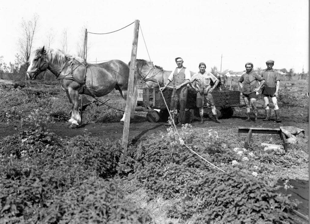 15.12  Tørvegravning, men hvor ?  Der står 1942-43 på æsken