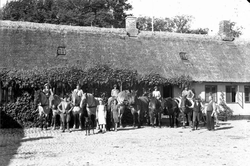 18.18  Ukendt landbrug.  År 1953