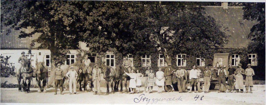 67.109  Tryggevælde gods, 4653 Karise år 1948