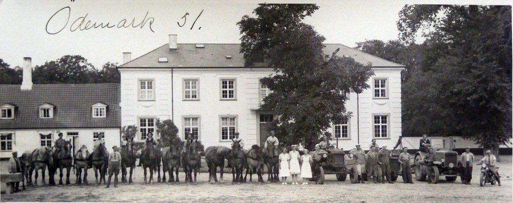 67.91  Ødemark gods , 4190 Munke Bjergby, år 1951