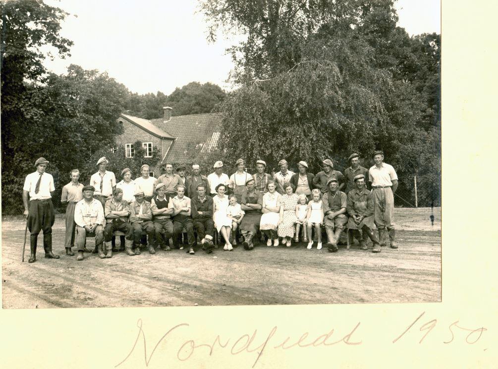 71.74 Nordfeldt gods 4780 Stege, år 1950