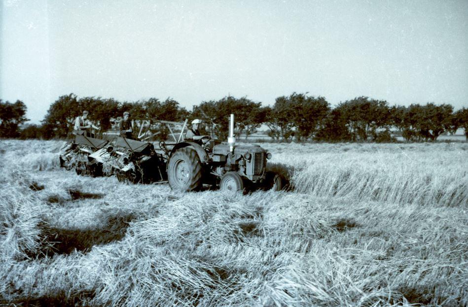 8.8  Landbrug, men hvor ?  Scannet fra nyere filmnegativ.