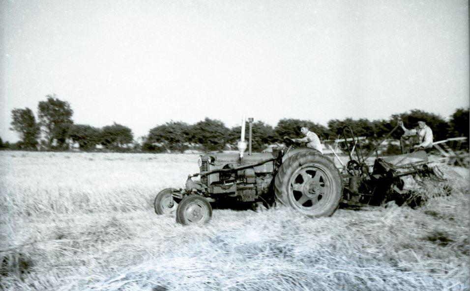 8.9  Landbrug, men hvor ?  Scannet fra nyere filmnegativ.